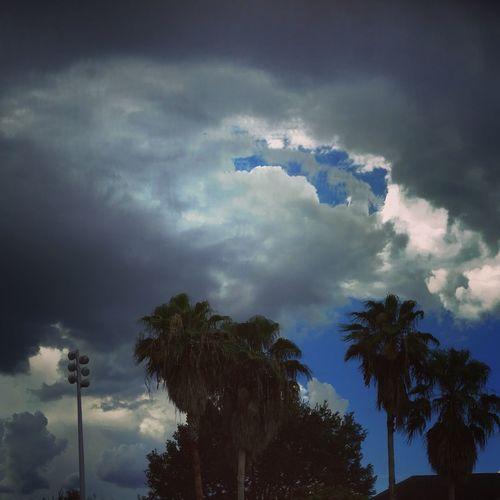 Sky Florida Weather Foggy
