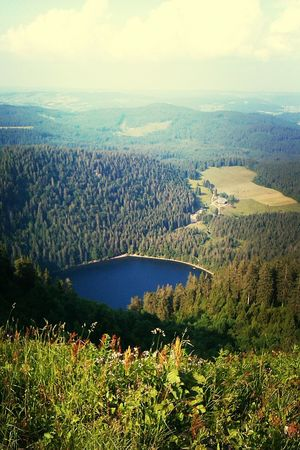 Blackforest Mountains Lake Landscape #blackforest