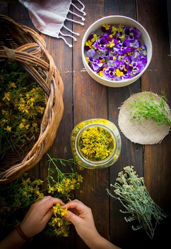 Herbalism Herbal Medicine Herbalist Human Hand Vegetable High Angle View Directly Above Close-up Dill Green Pea Soup Bowl Vegetarian Food Chive Fermenting