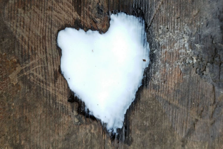 Desk Beauty In Nature Close-up Cold Temperature Day Directly Above Heart Shape Love Nature No People Outdoors Positive Emotion Snow Table Textured  Tree Tree Trunk Trunk White Color Winter Wood - Material