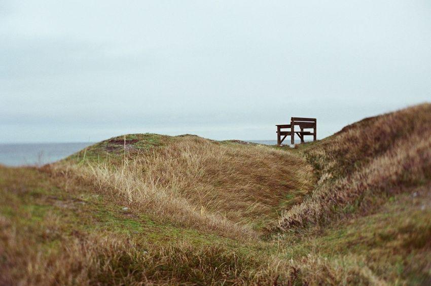 Canon Eos 3 Fujicolor Pro 400H Beach Day Field Film Photography Grass Landscape Nature No People Outdoors Scenics Sea