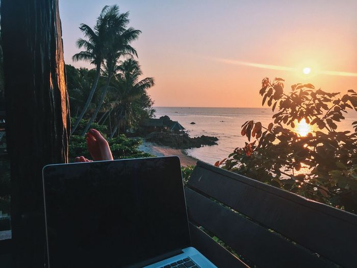 Work from home Thailand EyeEm Best Shots - Nature EyeEm Nature Lover EyeEm Best Shots Ocean Tropical Paradise Tropical Climate Feet Up Feet Work From Home Nomad EyeEm NOMAD Digital Nomad Working Work Laptop Sea Sunset Beach Vacations Tree Horizon Over Water Modern Workplace Culture Water Sky Palm Tree Nature Outdoors Beauty In Nature Day Going Remote