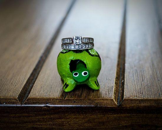 Macro Photography Wedding Ring Turtle Diamonds Indoor Close-up