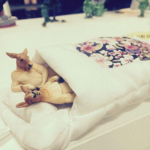 大人のガチャの遊び方♡ Capsuletoy Japan Tokyo Kangaroo