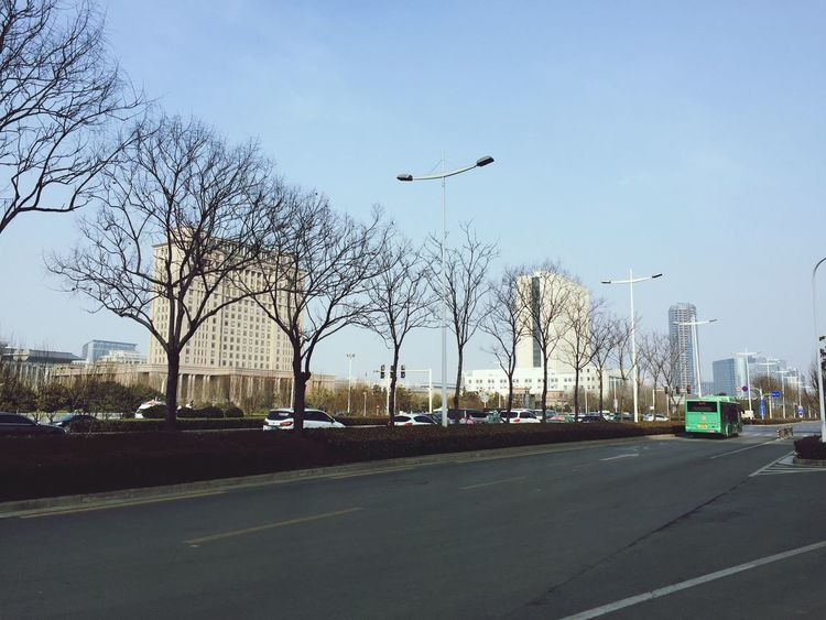 Enjoy my day! Transportation Car Road Bare Tree Sky Day Street Light Outdoors