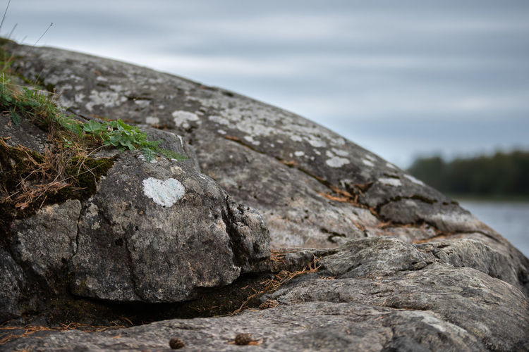 Close-up Cloud - Sky Day Environment Focus On Foreground Geology Heart Heart Shape Land Nature No People Outdoors Plant Rock Rock - Object Sea Sky Solid Textured  Tree Water