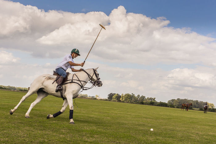 a polo player going for it Action Animal Themes Animals Argentina Cloud - Sky Dynamic EyeEm Gallery EyeEm Nature Lover Fun High Society Horse Horse Riding Landscape Nature Outdoors Polo Polo Player Sky Sport Things I Like The Color Of Sport