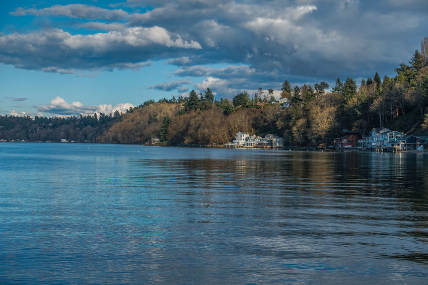 A view of the shoreline in Dash Point, Washington. Water Reflections Beauty In Nature Cloud - Sky Coast Dash Point Day Homes Lake Nature Nautical Vessel No People Outdoors Rippled Scenics Shoreline Sky Tranquil Scene Tranquility Tree Water Waterfront