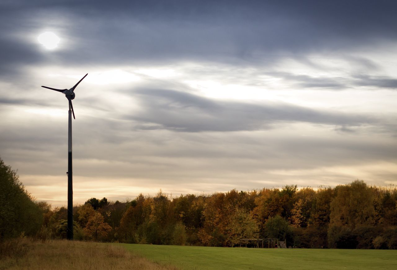 tree, sky, wind power, cloud - sky, nature, wind turbine, field, no people, windmill, grass, outdoors, scenics, beauty in nature, fuel and power generation, alternative energy, sunset, industrial windmill, day