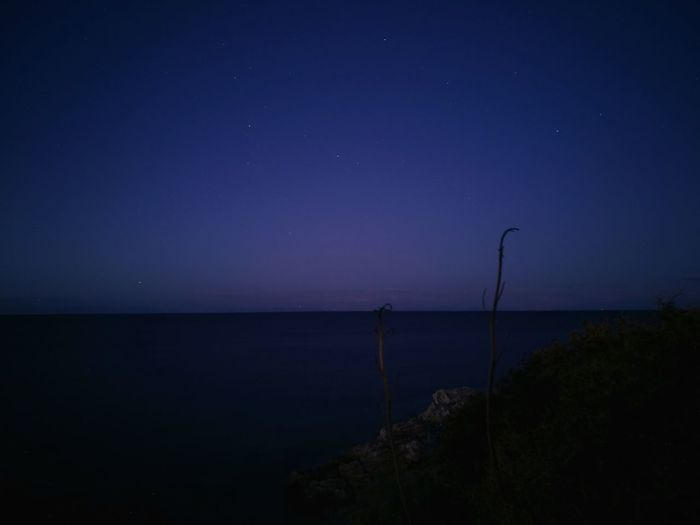 Night Night Sea