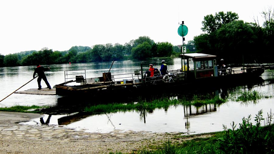 Ferryman paid in advance Riverbank Bikes🚲 Reflections In The Water Grey Sky River Donau Ferryman Ferryboat Water Nature Group Of People Sky Day Transportation Nautical Vessel Mode Of Transportation Real People Outdoors
