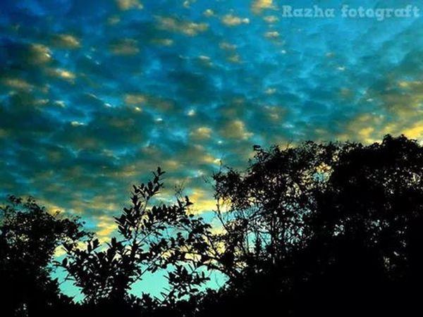 Melancholic Landscapes Sunny Afternoon magrib Palembang-Indonesia Lanscape Photography