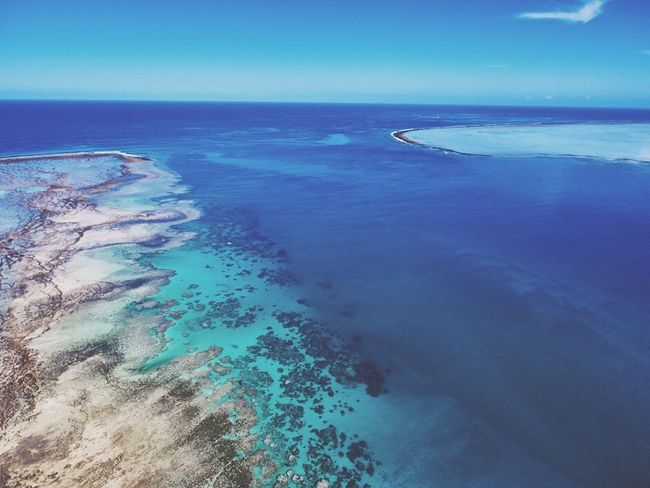 Above Fiji Drone  Drone Photography Horizon Over Water Blue Aerial View Beauty In Nature Tranquil Scene Water Ocean View Ocean Fiji Fiji Islands Fiji Photos Reef Clay Hayner Photo ClayHaynerPhoto Photo Photography Sea Photooftheday Tourism Seascape Beach Travel Travelphotography