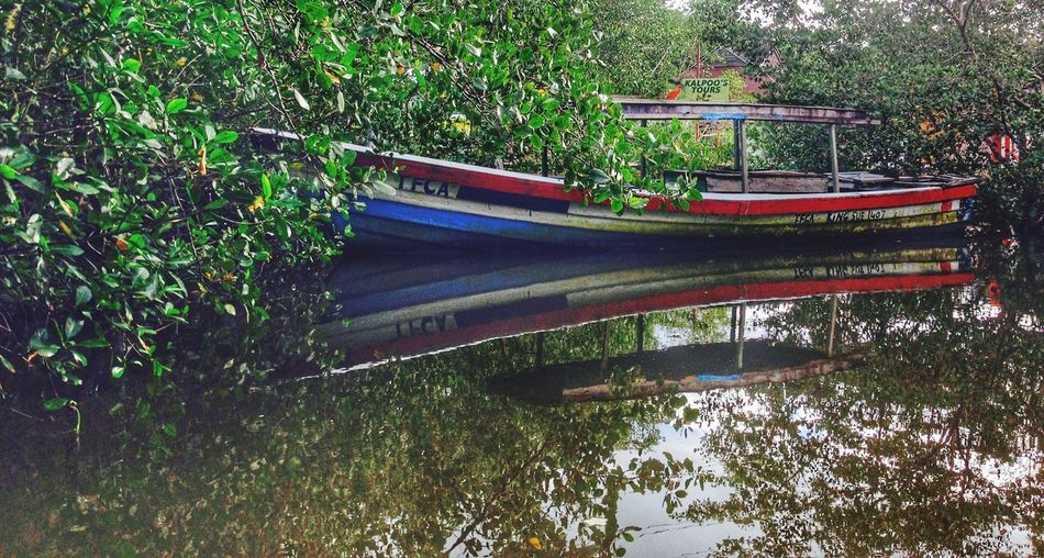 Stillness Reflections In The Water Caroni Swamp Trinidad And Tobago Nature Swamp Photos Swamplife Boats Caribbean_beautiful_landscapes Water Reflections Water Nature_collection