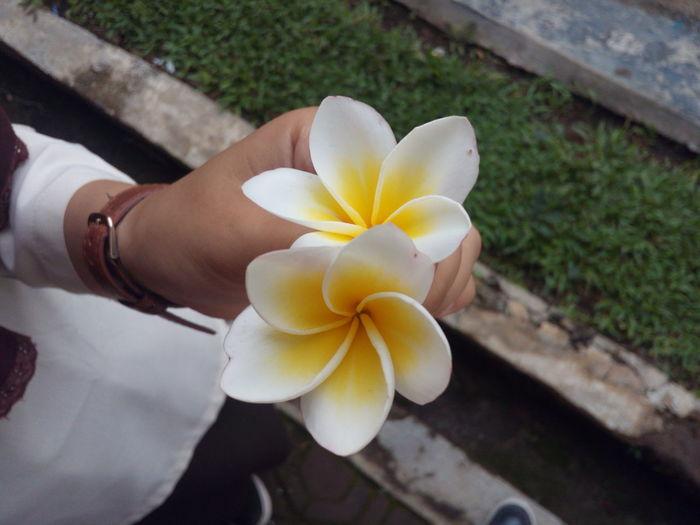 Original Photo Flower Friendship First Eyeem Photo