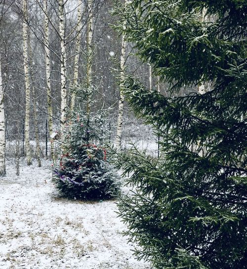 Russian snow