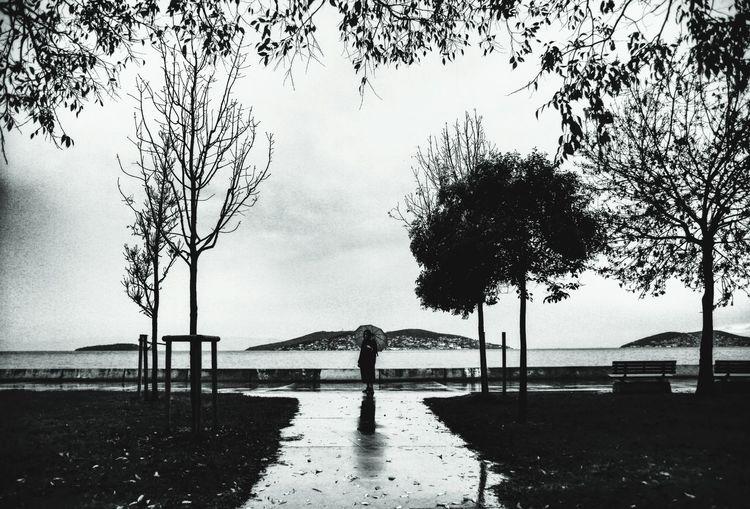 Dragos Beach, a lady in Istanbul. Istanbul Turkey Lady Blackandwhite Canon Tree Water Silhouette Sea Beach Sky Rainy Season RainDrop Rain Rainfall