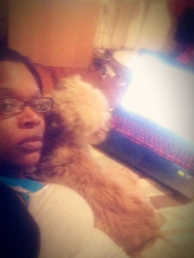 Just us Just Us... Mydog♡ Cute Pets My Laptop Hanging Out Hello World Taking Photos Enjoying Life Relaxing Love