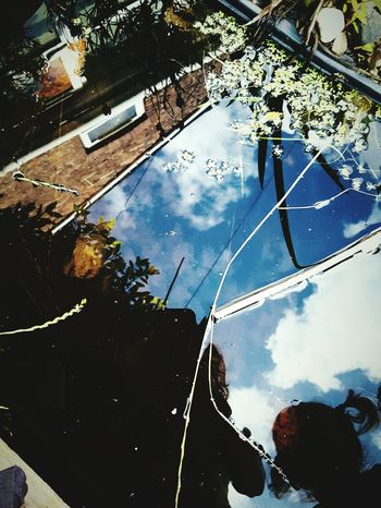 This Is Perspectiveday 14. Looking Down Seeing Up Reflection Garden Pond Terraced Houses The Wrong Way Up Sunny Day ☀ Urban Nature