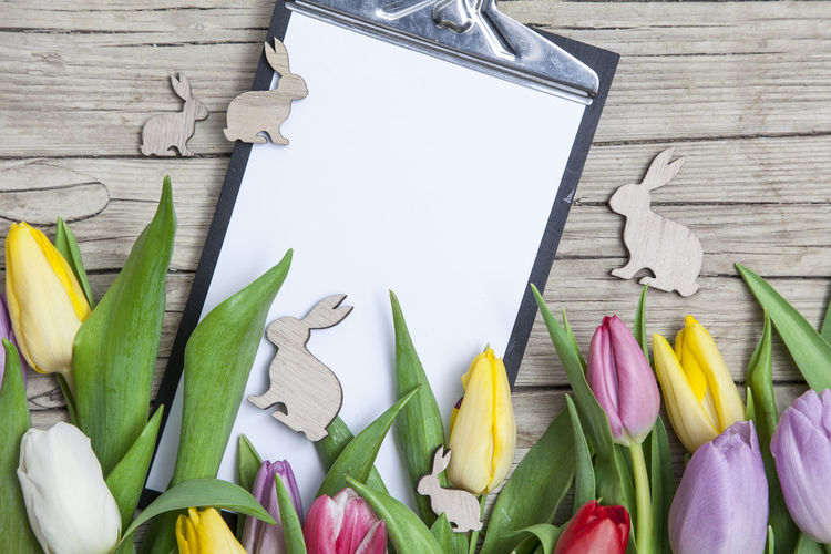 Colorful Tulips And Clipboard On Table