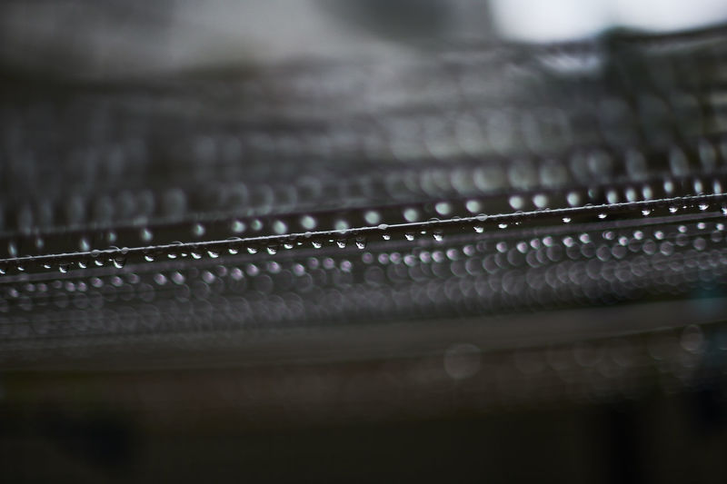Drops Rain Rainy Days Water Drops Black Color Close-up Dorop Of Water Drop Extreme Close-up Full Frame No People Pattern Rainy Rainy Day Selective Focus Water Water Drop