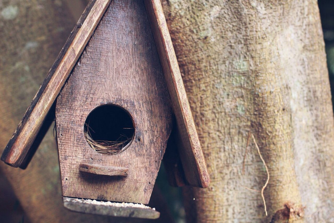 Close-Up Of Wooden Birdhouse