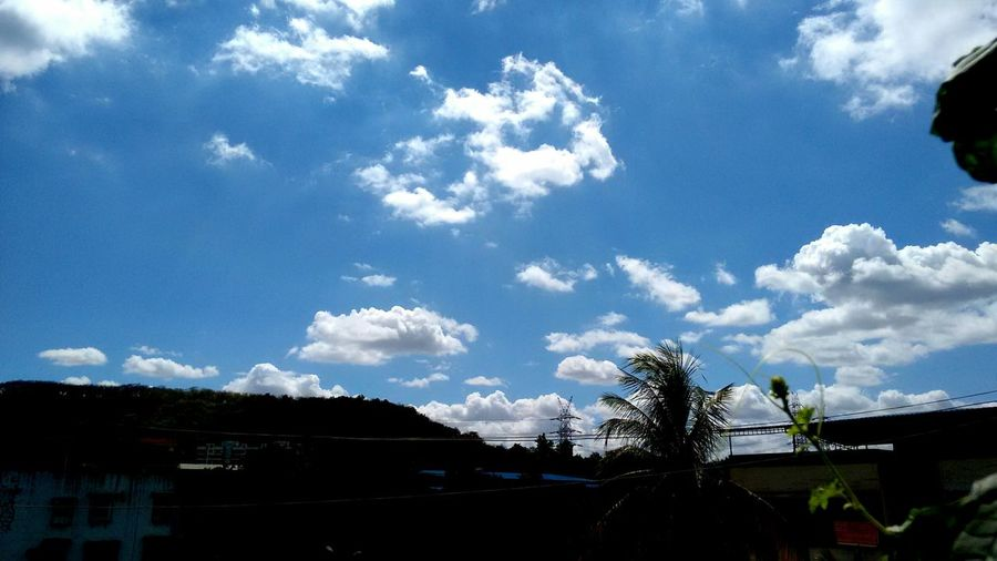 Nature On Your Doorstep Enjoying The Sun Relaxing bright sky, monsoon mornings