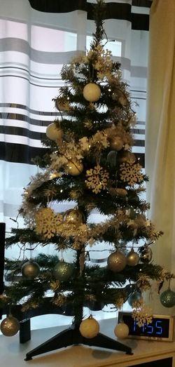 Low angle view of christmas tree at home