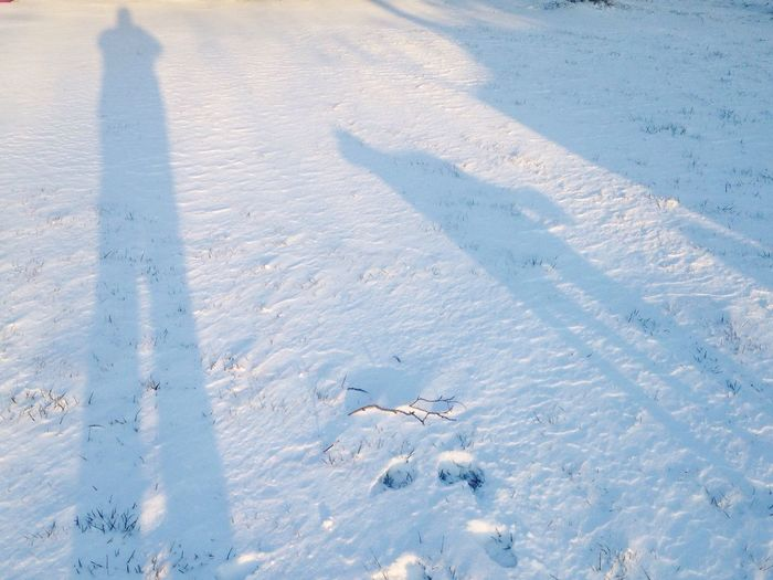 It's Cold Outside Taking Photos Snow ❄ Snow Chilly Me And The Dog Cold Shadow Shadows & Lights Silhouette