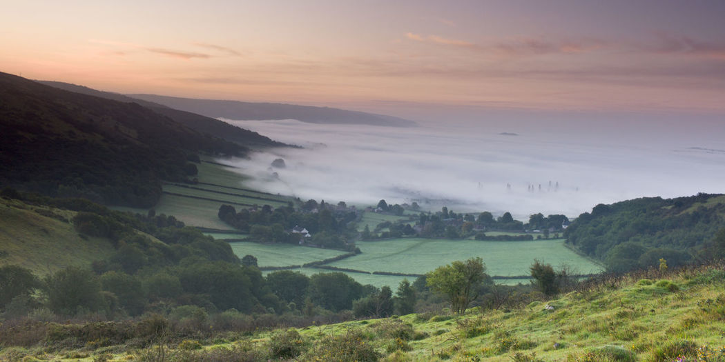 Agriculture Beauty In Nature Crook Peak Day Field Grass Landscape Mendip Hills Mendips Mist Mountain Nature No People Outdoors Rural Scene Scenics Sea Of Mist Sky Somerset Sunrise Sunset Tranquil Scene Tranquility Tree