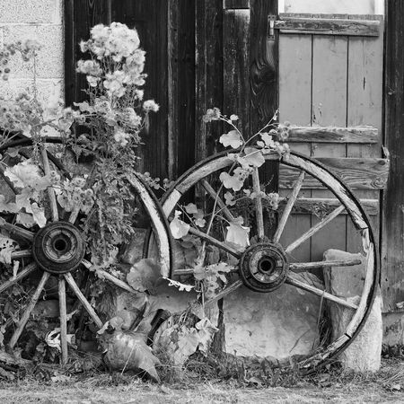 wagon wheel in black and white Romantic Abandoned Black And White Blackandwhite Damaged Damaged And Wrecked Day Deterioration Flower Germany Metal Nature No People Nostalgia Nostalgic  Obsolete Old Outdoors Rusty Southgermany Transportation Wagon Wheel Wheel Wood - Material Wooden