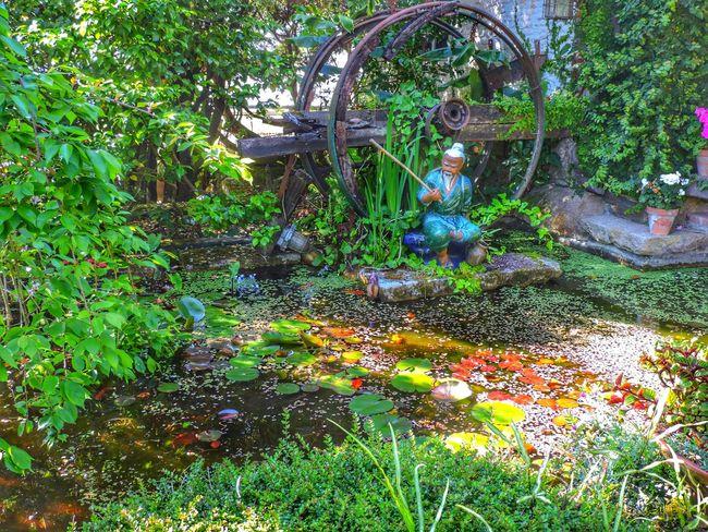 Secret places in town... Naturephotography EyeEm Nature Lover Nature_collection Nature Enjoying Life Sunday Vigo, Galicia (España) #vigo #galicia #pontevedra #spain #españa Relaxing siempre
