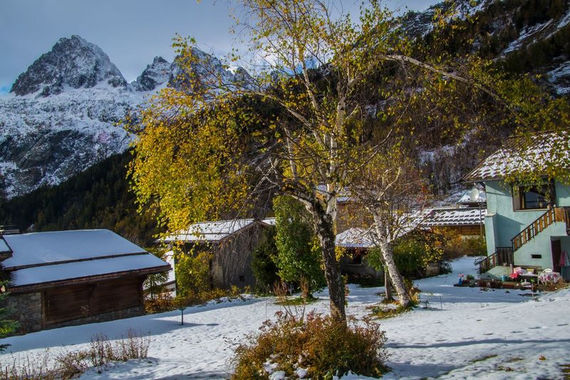 trelechamps,chamonix,haute savoie,france Snow Winter Cold Temperature Tree Plant Architecture Nature Mountain Building Exterior Building Built Structure Beauty In Nature House No People Outdoors Covering Scenics - Nature Day White Color Snowcapped Mountain