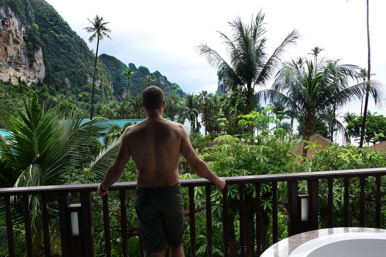 Rear View Of Shirtless Man Standing At Porch By Trees And Sea