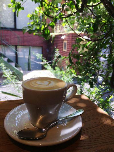 カプチーノ。ゲイシャです。 Drink Food And Drink Refreshment Mug Cup Coffee - Drink Coffee Cup
