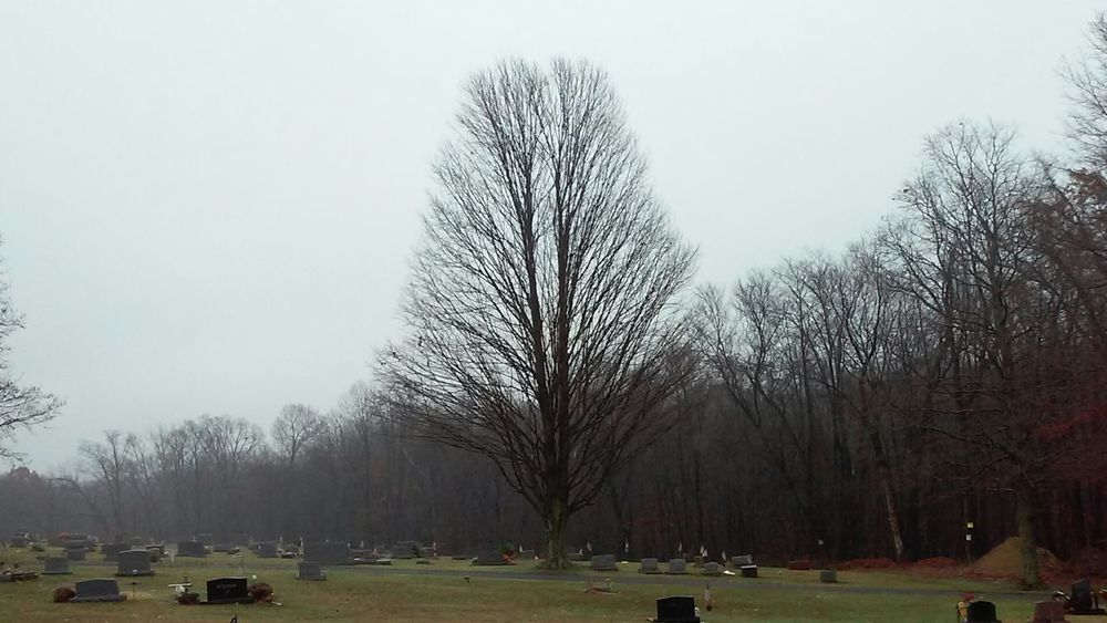 Tree Nature No People Grass Sky Outdoors Beauty In Nature Day Gravestone Cold Cold TemperatureLandscape Grass Trees Lone Tree Grave Tranquility Graveyard Beauty Graveyard No Filter Non-urban Scene Tranquil Scene Cloud - Sky No Filter, No Edit, Just Photography United States