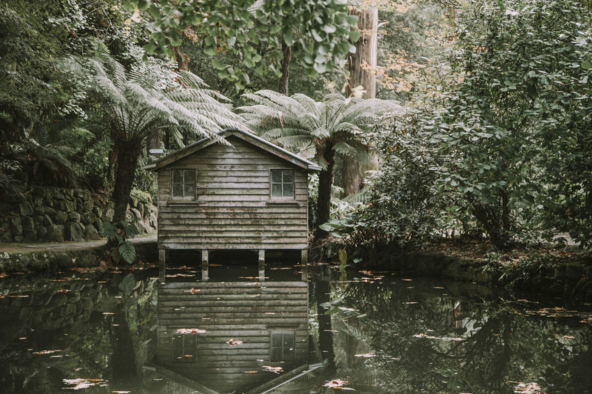 Nature Architecture Beauty In Nature Building Exterior Built Structure Dandenong Ranges Day Forest Growth House Lake Nature No People Non-urban Scene Outdoors Plant Reflection Tranquil Scene Tranquility Tree Water Waterfront Windows