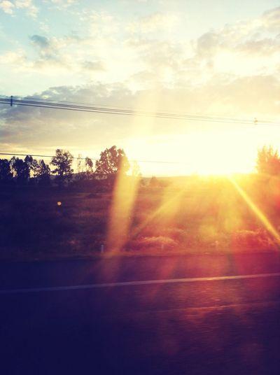 Sunshine Taking