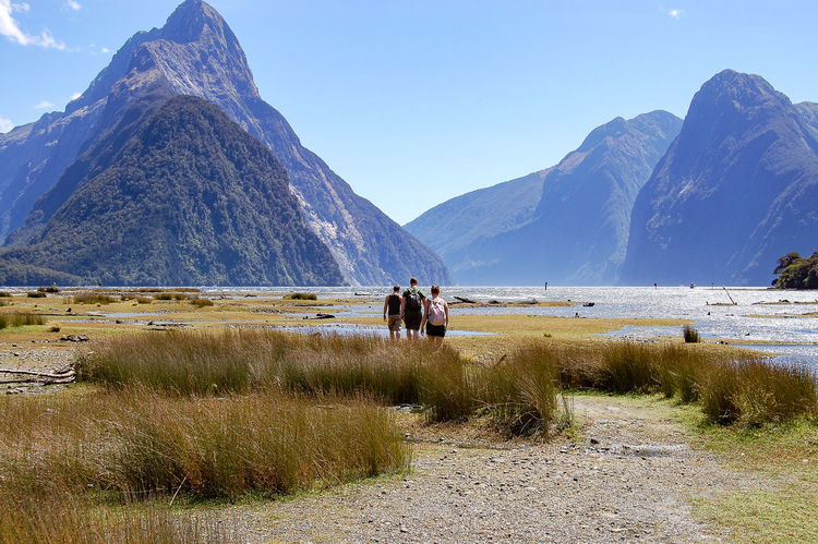 My Adventure Buddies taking in the scenery in Milford Sound, New Zealand Adventure Buddies Geology Hill Horizon Over Land Landscape Milford Sound Mountain Mountain Range Nature Outdoors Physical Geography Remote Scenics Solitude Tranquil Scene Tranquility