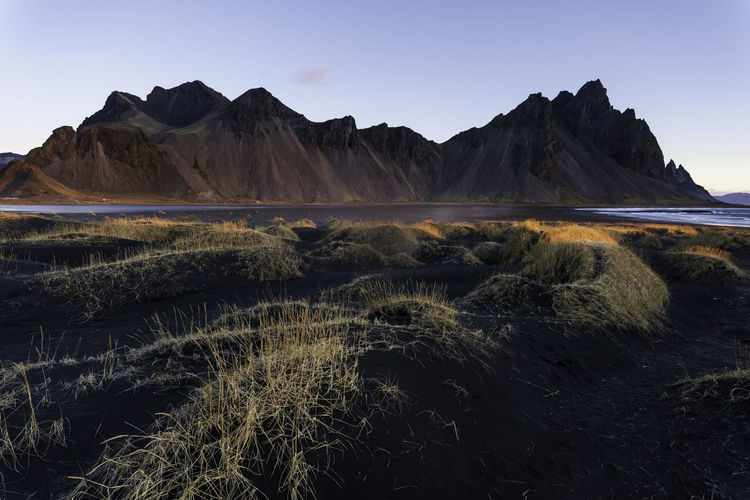 Beautiful view of Vestrahorn at sunrise Landscape Iceland Vestrahorn Höfn Stokksnes Mountain Nature Black Sand Beach Spectacular Highlands Travel Destinations Morning Sunrise Outdoors Autumn Cold Temperature Hiking Panorama Scenery North Dawn Vegetation Dune Amazing Shore