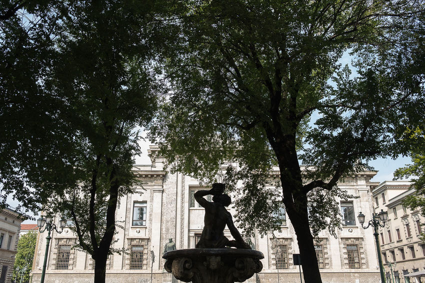 a view of court house in bergamo Architecture Art And Craft Building Exterior Built Structure Day Human Representation Low Angle View Male Likeness No People Outdoors Sculpture Statue Tree