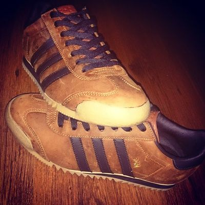 Todaystrainers Adidasrom Adi_gallery Casual_district Casualclobber_obsession Adidas_gallery Adidas Originals Adidasoriginals Sofreshfa Definitely one of my favoritesAdidasramon085