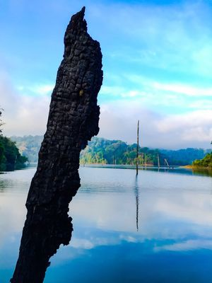 Sky Water Nature Tranquility Beauty In Nature Lake Tranquil Scene Tree No People Cloud - Sky Outdoors Day Lost In The Landscape