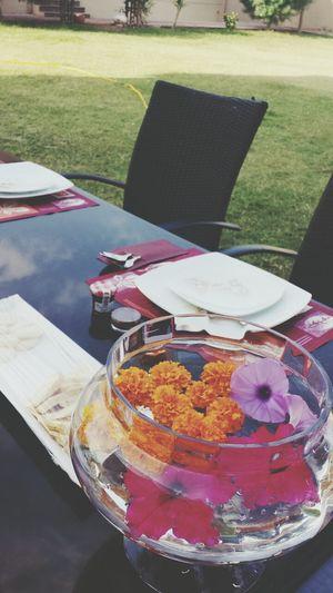 outdoor breakfast?