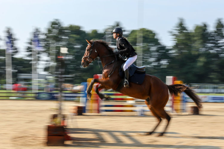 Horse Jumping Blurred Motion Competition Horse Horse Jumping Horse Jumping Competition Horse Jumping Event Horseback Riding Motion Movement Outdoors Riding Running Speed