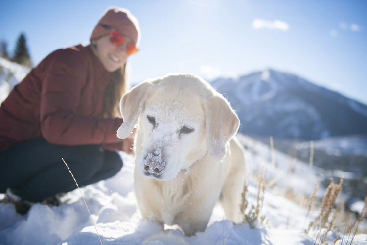 View of a dog on snow covered mountain