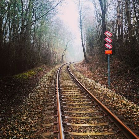 Railroad Track Woods Signs