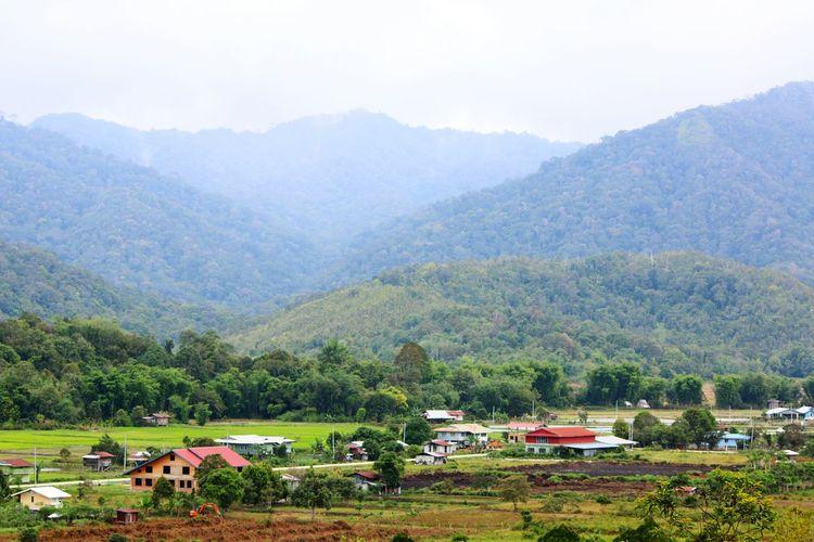 Naturallandscape Hillscape Hillside View Hills And Valleys Tourist Destination BARIO Sarawak BARIOFood&culturefestival