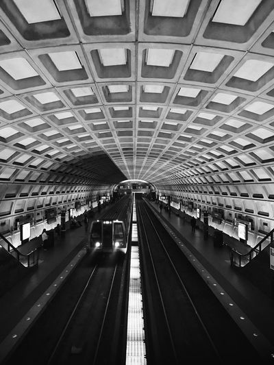 Architecture Ceiling Day Illuminated Indoors  Large Group Of People People Public Transportation Rail Transportation Railroad Station Real People Transportation