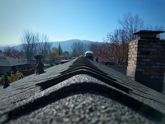 top o' the world Cold Cold Temperature Rooftop Roof Chimney POV Shingle Shingles Horizon Daytime Outdoors Oitside Outside Outdoor Photography Outside Photography Perspective Architecture Built Structure Sky Day Outdoors No People Tree